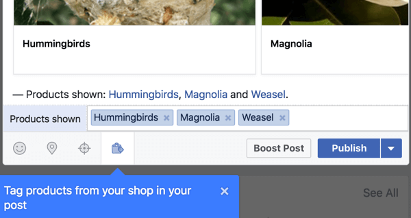 Include product links from your Facebook shop.