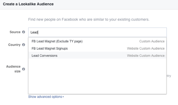 In the Source field, select your website custom audience on Facebook.