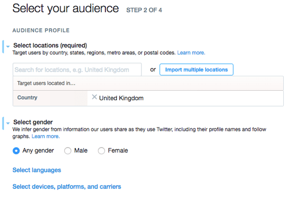 Describe the audience you want to target with your Twitter ad.