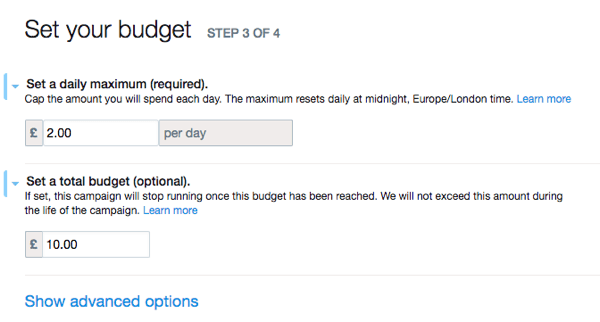 Set up your Twitter ad's budget.