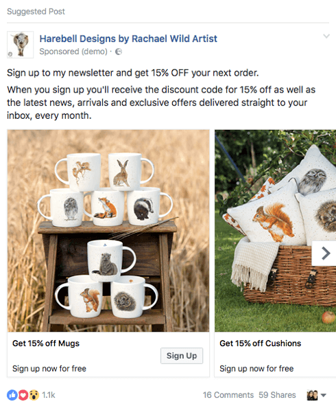 This ecommerce company is promoting a discount code lead magnet in a Facebook ad.