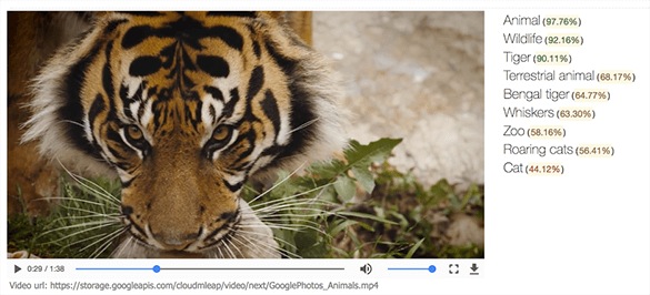 Google announced the upcoming launch of a new machine learning API that will automatically recognizing objects in videos and makes them searchable.