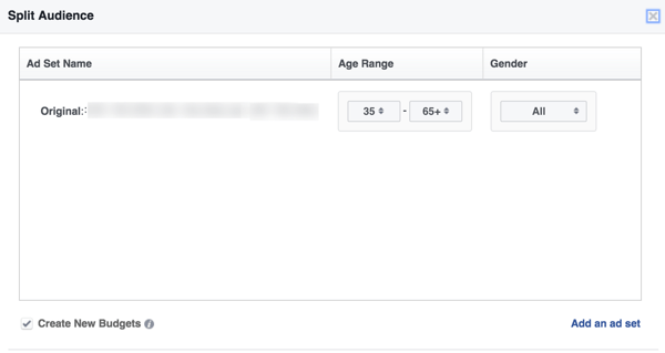 Select an age range and gender for your split audience.