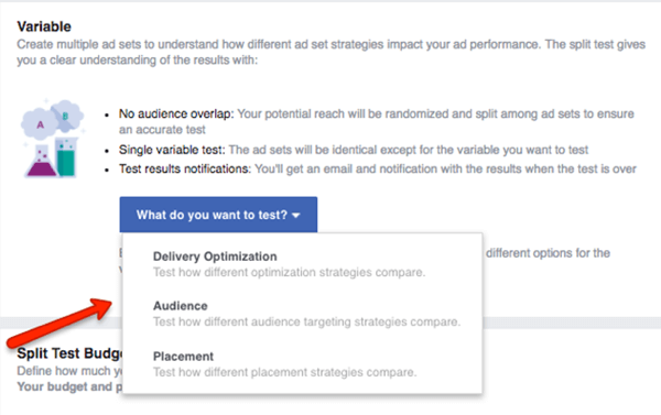 Select which variable to test in your Facebook campaign.