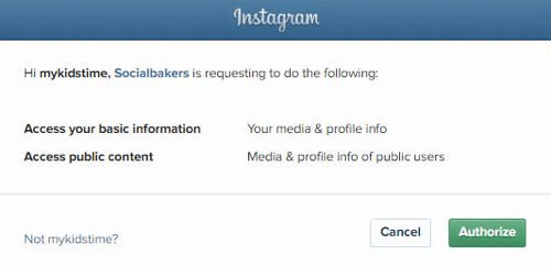 Authorize Socialbakers to access your Instagram account information.