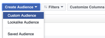 Click the option to create a Facebook custom audience.