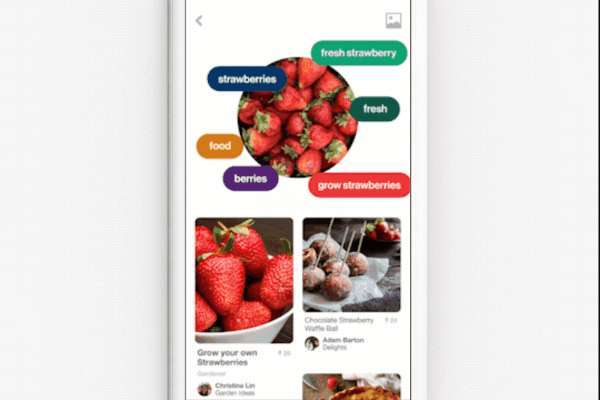 Pinterest rolled out the ability to use the Lens Camera to take a photo of an entire dish and get recipes to recreate the meal.