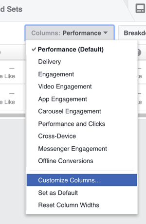 In the Ads Manager, click Columns and choose Customize Columns from the drop-down list.