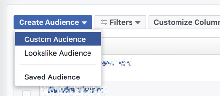 Create a custom audience in Facebook Ads Manager.