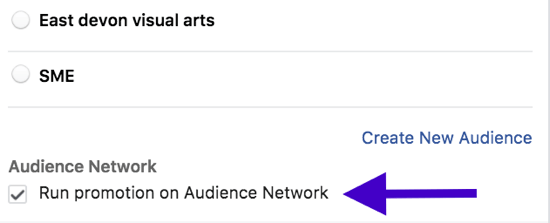 Choose whether you want your Facebook ad to appear on external websites.