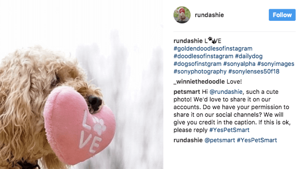 PetSmart peruses a variety of pet-related hashtags and asks fans for permission to use relevant images in their marketing.