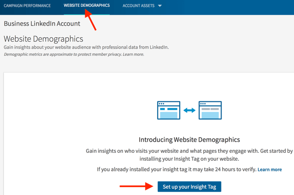 Go to the Website Demographics tab to set up your insight tag.