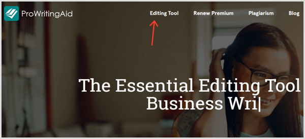 ProWritingAid Editing Tool