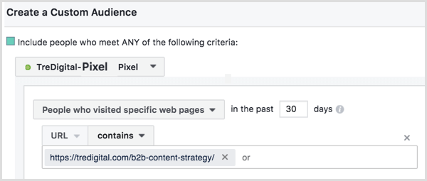 Facebook custom audience based on pixel