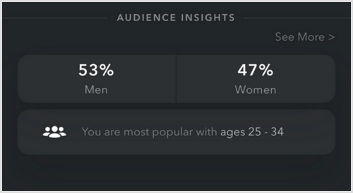 Snapchat Audience Insights