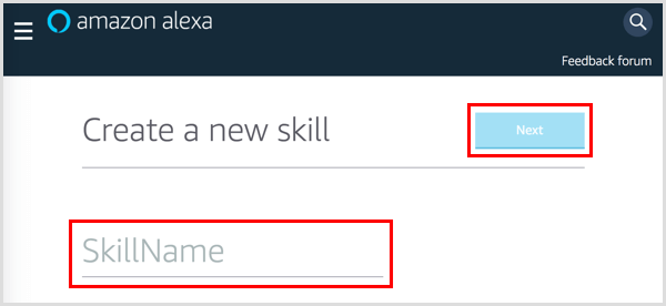 Type in a name for your Alexa skill.