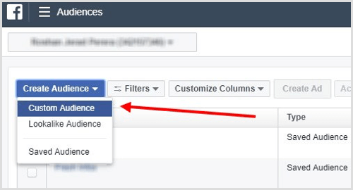 Select Custom Audience from the Create Audience drop-down menu.