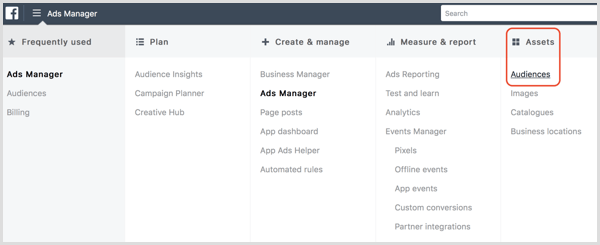 Facebook Ads Manager Audiences dashboard