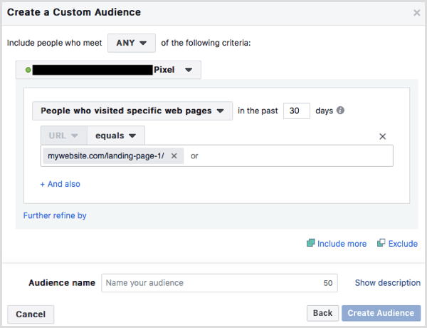 custom audience people who visited landing page