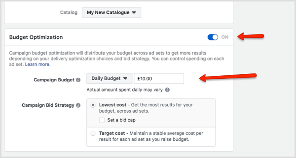Budget Optimization section in Facebook Ads Manager