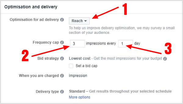 Choose Optimization and Delivery options for your Facebook campaign.