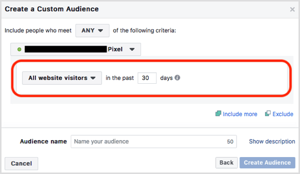 Facebook website custom audience default
