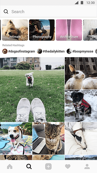 Instagram is testing a redesigned Explore tab that will make it easier to discover things users are interested in and organize suggested content into relevant topic channels.