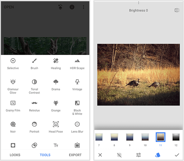 A Snapseed menu on the left shows 20 different tools, and a Snapseed filter example on the right shows a photo of two wild turkeys walking in golden grass and a menu of filters on the bottom of a mobile screen.