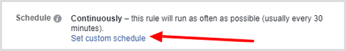 Set custom schedule option for Facebook automated rule
