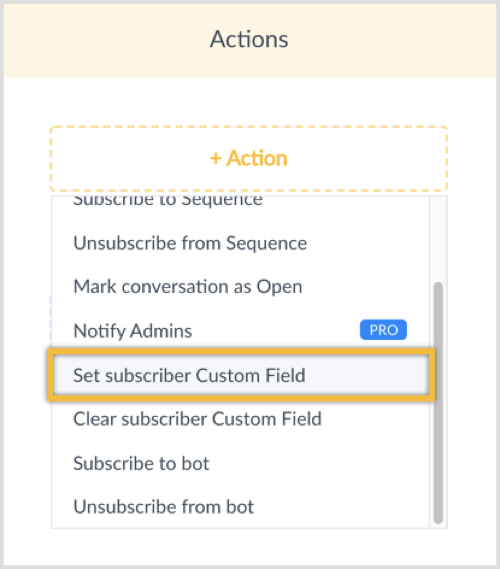 Click on the +Action button and select Set Subscriber Custom Field.