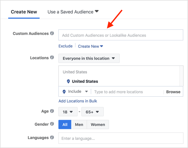 In the Custom Audiences field, type in the name of your website visitor custom audience.