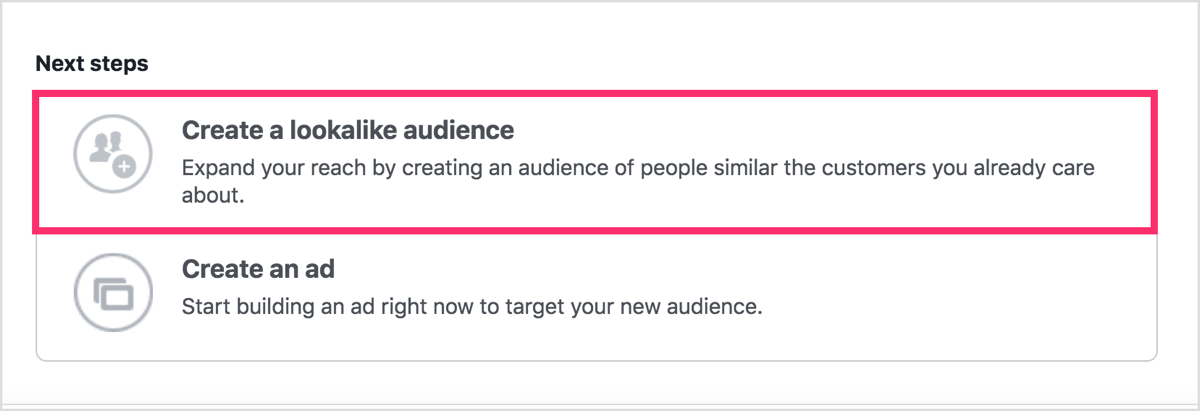 After you create you custom audience, click Create a Lookalike Audience.