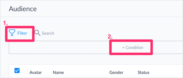 If you have a large subscriber list and want to segment it before exporting, click the Filter icon and then click + Condition.