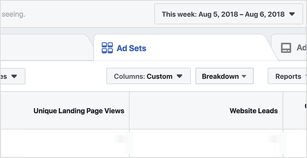 On the Ads Sets tab, the columns are set to Custom, and the report shows results for the week of August 5. The columns Unique Landing Page Views and Website Leads appear in the Ad Set report. Ralph Burns says for a lead magnet campaign, you want at least 50 conversion per ad set each week.