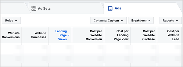 On the Ads tab, the columns are set to Custom, and the report shows several conversion metrics: Website Conversion, Website Purchases, Landing Page Views, Cost Per Website Conversion, Cost Per Landing Page View, Cost Per Website Purchase, and Cost Per Website Lead. Ralph Burns says problems with cost per acquisition will be your first sign that an ad is having an issue in the Facebook ads algorithm auction.
