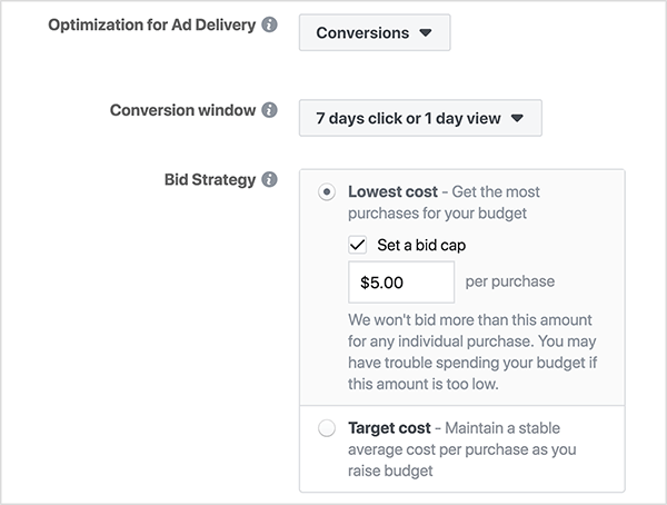 "In the Optimization for Ad Delivery section of a new Facebook Ad Campaign, the Bid Strategy options show radio buttons for Lowest Cost and Target Cost. The Lowest Cost option has an additional parameter, the Set a Bid Cap checkbox. When selected, a text box appears where you can enter a cap for the amount you want to pay per conversion. In this screenshot, the bid cap is set to $5.00 per purchase. An on-screen note says ""We won't bid more than this amount for any individual purchase. You may have trouble spending your budget if this amount is set too low."" Ralph Burns says selecting the Set a Bid Cap checkbox limits the number of impressions your Facebook ads get, and it's better to leave this box cleared."