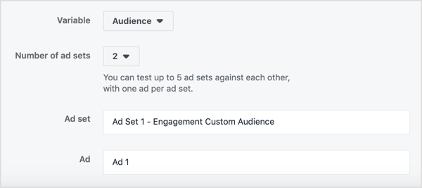 Name your two ad sets and ads based on your audiences.