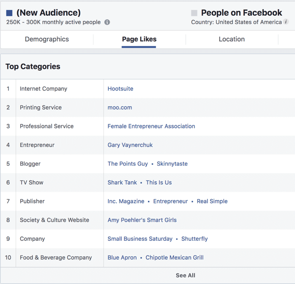 Page Likes for an interest based audience in Facebook Ads Manager.
