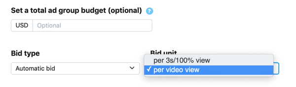 Option to set bid type and unit for your Promoted Video Views Twitter ad.