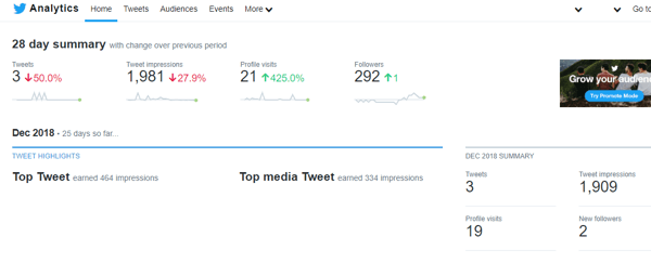 Example of a Twitter Analytics 28 day summary.