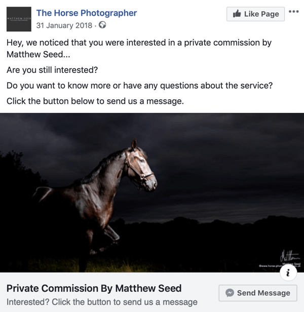 How to convert website visitors with Facebook Messenger ads, step 3, post example by The Horse Photographer