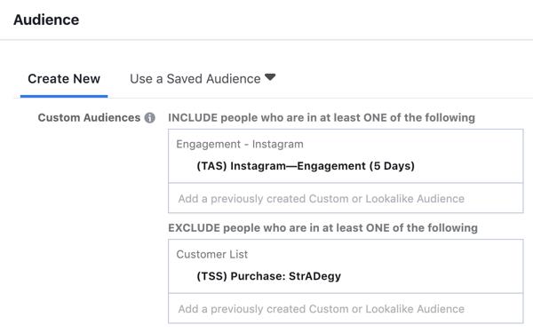 Hoe u een zelfvoorzienende Instagram-advertentiereeks maakt en uitvoert voor slechts $ 5 per dag, maak een Instagram-advertentiecampagne, stap 9, geselecteerde aangemaakte aangepaste doelgroep