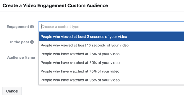 Facebook ThruPlay Optimization video ad engagement custom audience.