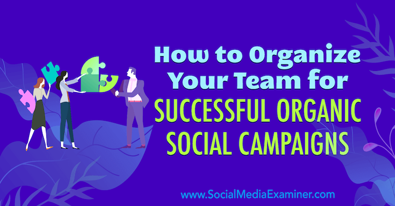 How to Organize Your Team for Successful Organic Social Campaigns by Janette Speyer on Social Media Examiner.