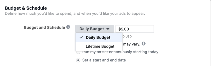 selecting Lifetime Budget at ad set level for Facebook campaign on day of flash sale