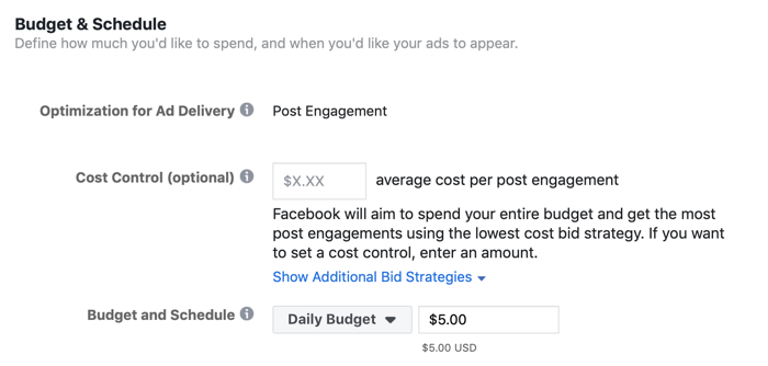 step 5 of how to set up Facebook engagement campaign to promote customer survey