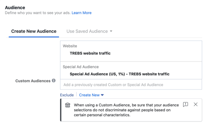 special ad audience in Audience section of Facebook campaign setup