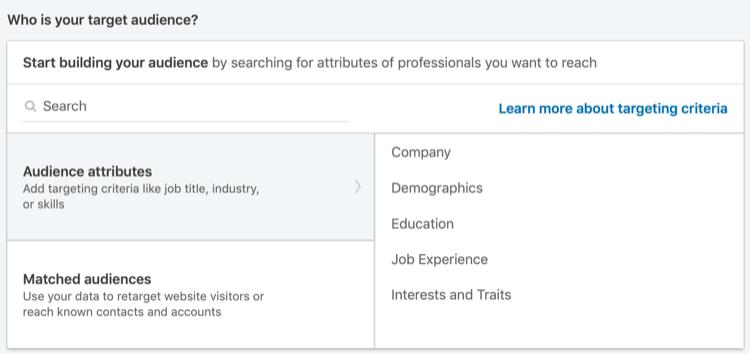 attributi del pubblico per gli annunci LinkedIn