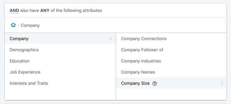 target LinkedIn ads based on company size