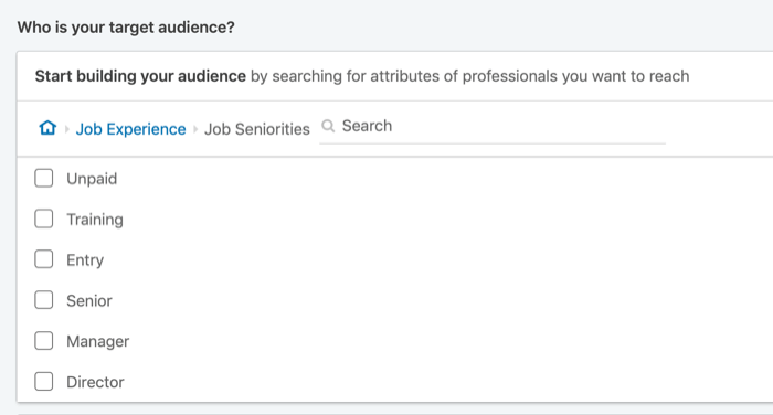 target LinkedIn ads by job seniority